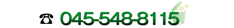 045-548-8115